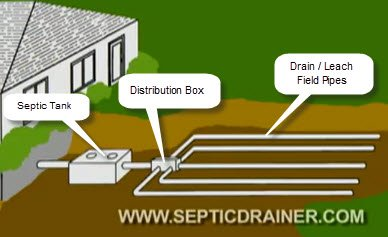 How Septic Systems Work Septic Drain Field Maintenance