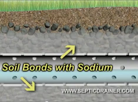 Septic Drainfield Failure The Real Problem May Be Sodium