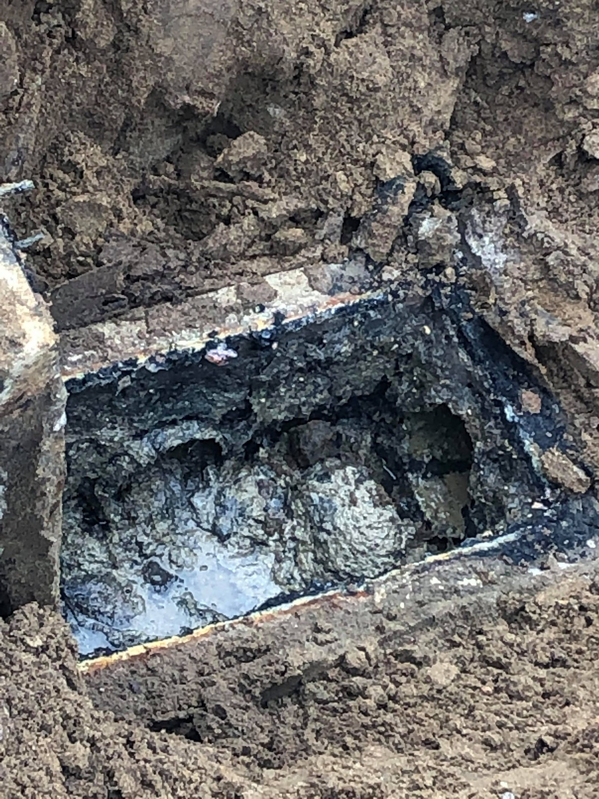 Septic System Trouble Signs: When Green Is Not A Good Thing